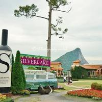 大仏壁画とワインヤードも楽しめる!パタヤ南部の魅力あふれる観光地2選