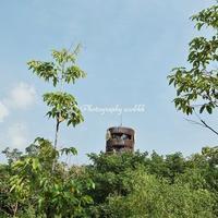 タイ王国バンコク都内の森林再生地「都会の森(Urban Forest)」
