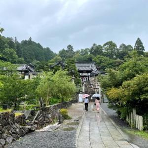柳谷観音の紫陽花 (京都ぶらり)