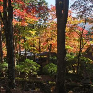 箱根仙石原・長安寺