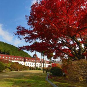 恒例・山のホテル