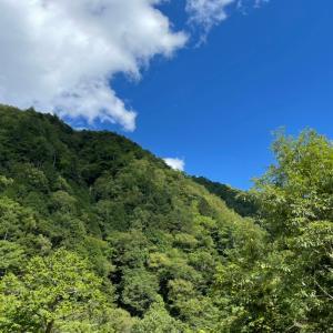 山との一体感を目指しての【歩く】をやってみた