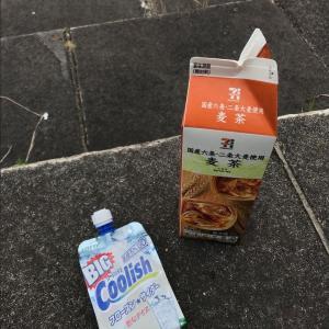 箱根に登って撮った たった一枚の写真