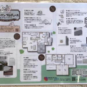 【豪華すぎるランチ会と[猫と楽しく住む家]のモデルハウス見学】