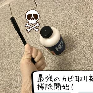【カビ取り剤の最終兵器で懲りずに「浴室のカビ」との戦い復活!】
