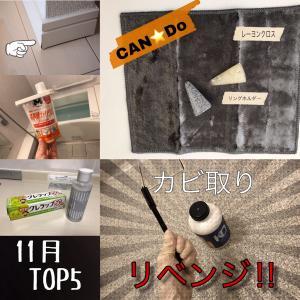 【11月の人気記事TOP5】