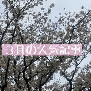 【3月の人気記事TOP5】