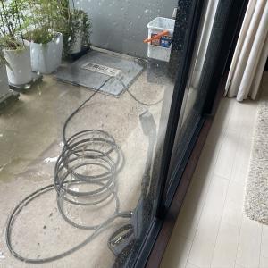 今日も雨♪張り切って窓掃除!