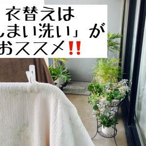 衣替えの季節♪「しまい洗い」第一弾は冬物寝具。