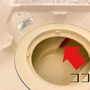 「セリア」65cmの排水パイプ用ブラシで浴室排水口の奥を掃除!!