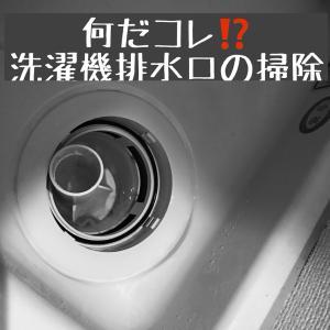 【※閲覧注意! 洗濯排水口の掃除】