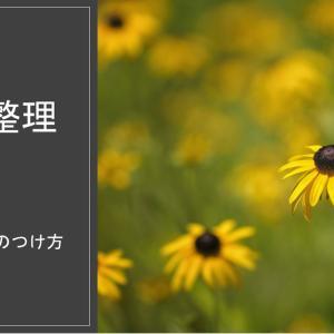 【写真整理~おススメの家族年表とフォルダの名前の付け方~】