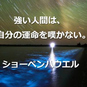 『宿命』と『運命』を知って素晴らしい人生を歩み出そう