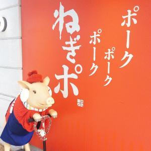 有楽町「ねぎポ」の理想的なピンク色とんかつが素晴らしい!!