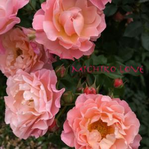 愛の道を開くあなたの進化・愛のエロヒムのメッセージ