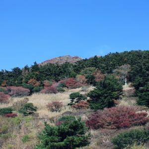雲仙仁田峠では、秋空に紅葉が映え、初冬の薫りへと誘っている