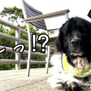 連休3日目!!!(笑っ)