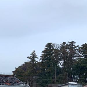 あああ〜雨の…日曜日!(笑っ)