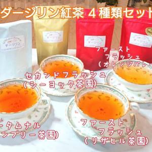【美味しいダージリン紅茶がいっぱい‼️】