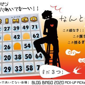 【BLOG BINGO 2020】PICK-UP PICs :「まだ3つ!」ゼンゼン穴あかない自慢来たーーーッ!!