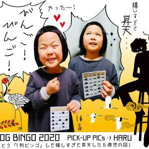 【BLOG BINGO 2020】PICK-UP PICs : とうとう「1列ビンゴ」して嬉しすぎて昇天した6歳児の図!