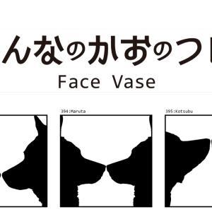みんなのかおのつぼ / Face Vase:393 Chachamaru -> 395 Kotsubu