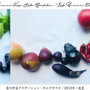 食卓のデザイン#48:『夏の野菜グラデーション』2019年・晩夏!