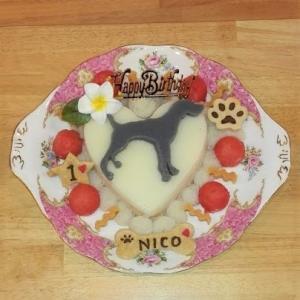 犬用ケーキ ハート型(L)