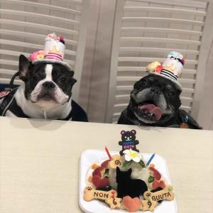 フレンチブルドッグ「BUUTAくん」&「NONちゃん」のBirthdayケーキ