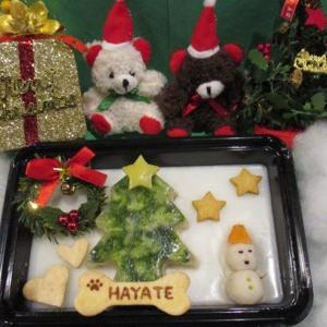 犬用 お肉のクリスマスケーキの発送します!