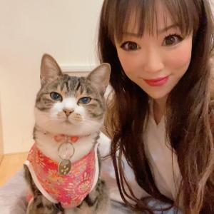 ペットと話そう~ 第46回 アニマルコミュニケーション 開催のお知らせ☆彡