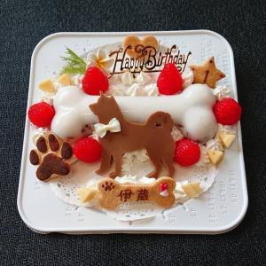 犬用ケーキ  骨型 (S)②