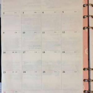 ADHDなりの工夫。健康記録を見開き一ヶ月で自作。