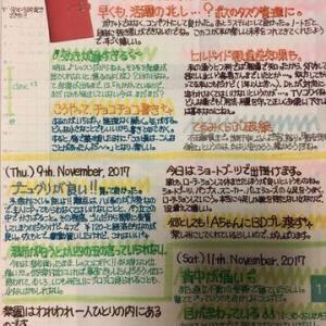 またカラフルな色を使いたくなったときの手書き日記。