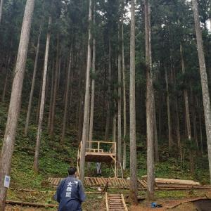わくわくの森で五感を研ぎ澄ます!