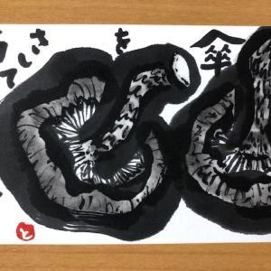 椎茸 シイタケ