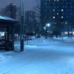 【札幌・中島公園】雪の中島公園