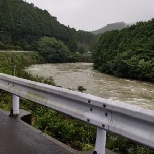 昨日の雨で、川は増水、滝も勢いが、我が家の栗も落ちる。