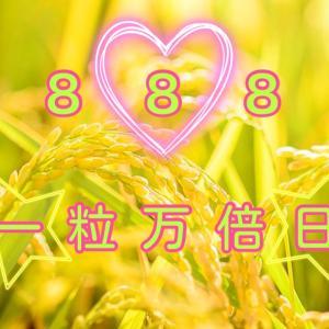 今日は888、最高に、縁起がいい日です!
