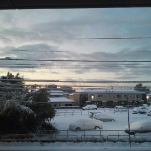 雪は大丈夫そう