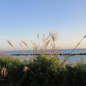 ウォーキング!海岸から見た日没!