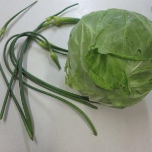 晩ご飯の一品!頂き物のキャベツとニンニクの芽で。