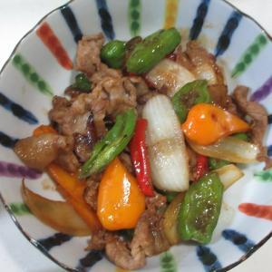 晩ご飯の一品!畑のパプリカとシシトウの炒め物!