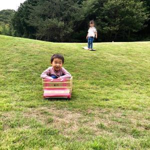 芝生の上を裸足で思いっきり遊ぶ!