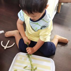 息子の手仕事は、無農薬の枝豆とり