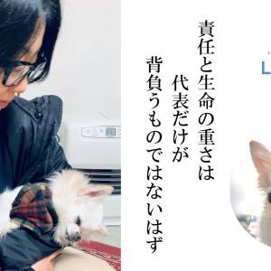 【応援メッセージ】LYSTA団体名の名付け親 戸塚さん♪