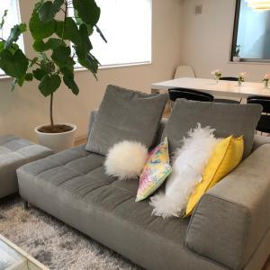 このソファの購入を決めた7つのポイント
