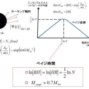 ブラックホール蒸発過程における量子エンタングルメントの時間発展