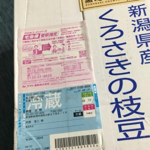 日本一美味しい枝豆
