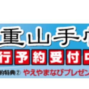 八重山手帳2020☆